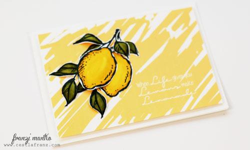 20150107_Lemons